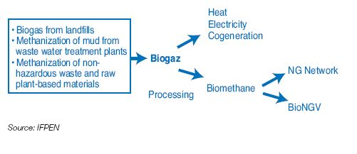 Biogas in Europe: future prospects? | IFPEN