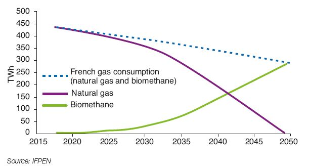 Fig. 2 – Overview of the French gas market