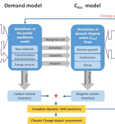 Dynamic modeling carbon neutrality