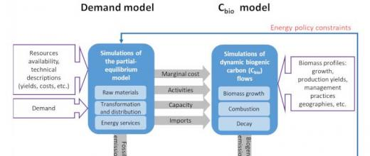 Dynamic modeling to help achieve genuine carbon neutrality