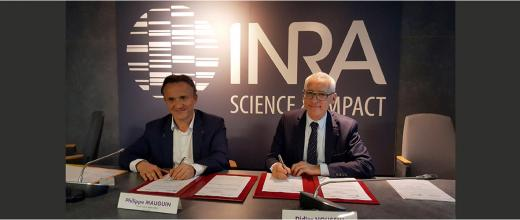 Bioeconomics, biotechnologies, soils:  three priorities central to the collaboration between Inra and IFPEN