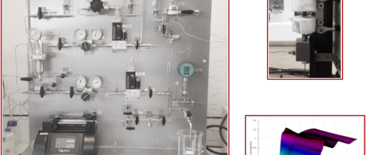 In situ characterization of the genesis of the active sites of hydrotreatment catalysts by X-ray Absorption Spectroscopy