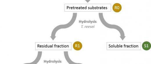 F'Unlock project: to unlock plant biomass hydrolysis using enzymes