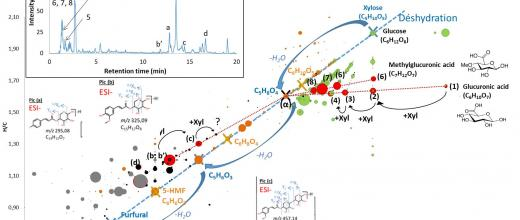Multiplying analytical dimensions to identify bio-based molecules