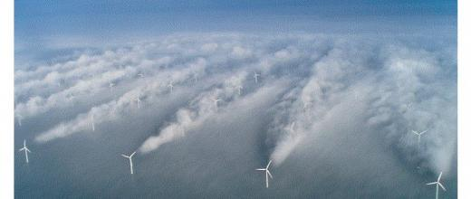 A new numerical tool to simulate the interaction between wind farms and local meteorological conditions